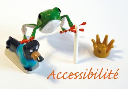 Accessibilite.jpg