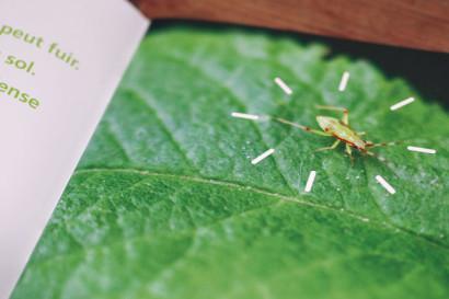 Brochure-Biologie-moleculaire-INTRO-03