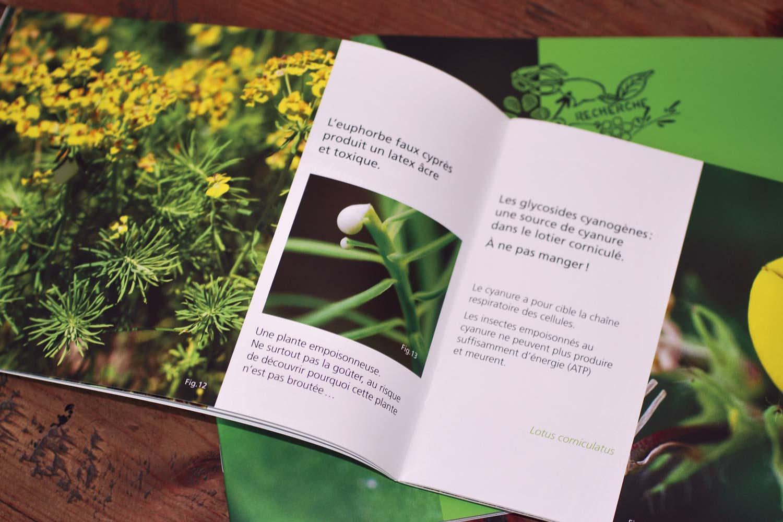 Les-plantes-savent-08.jpg