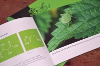 Les-plantes-savent-11.jpg